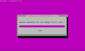 Confirm MySQL Password
